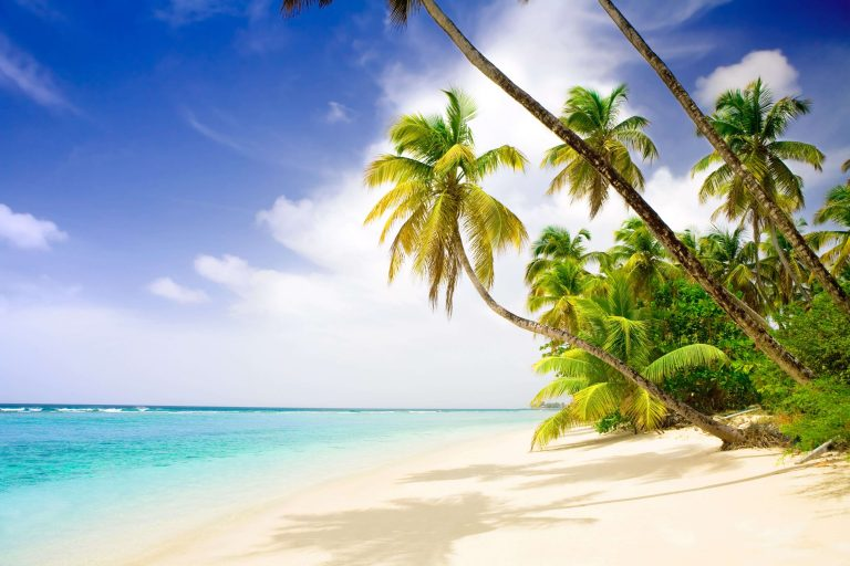 Relax in Caribbean Paradise